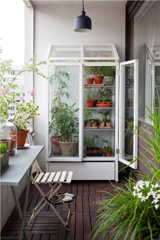 un armadio in vetro può essere utilizzato per riporre varie cose o anche per realizzare un giardino o una serra