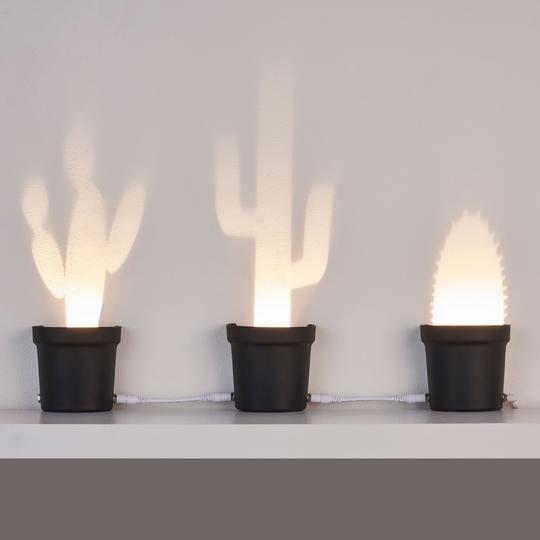 Ecco tutte e tre le lampade a forma di cactus come arrangiamento
