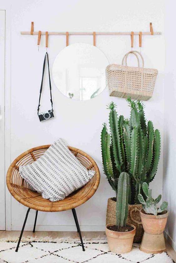 i cactus in vaso saranno una bella idea per uno spazio di ingresso boho o deserto, sembrano spettacolari