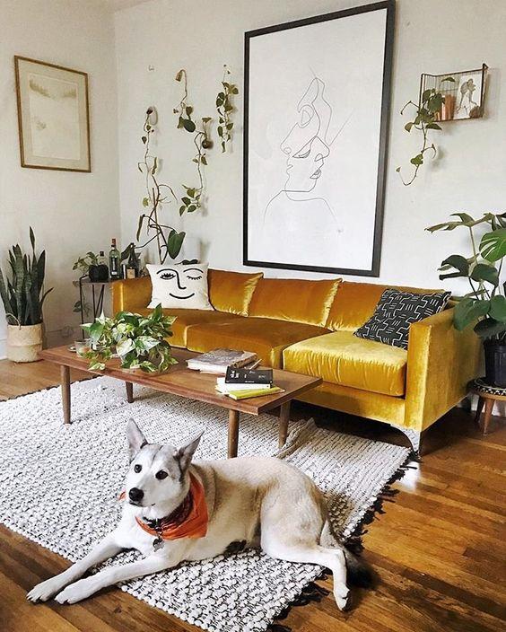 un audace divano in velluto senape è il fulcro del soggiorno, con il suo colore e materiale