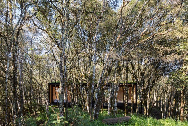 La cabina è rivestita con pannelli neri e il tetto è erboso per far risaltare al minimo il terreno