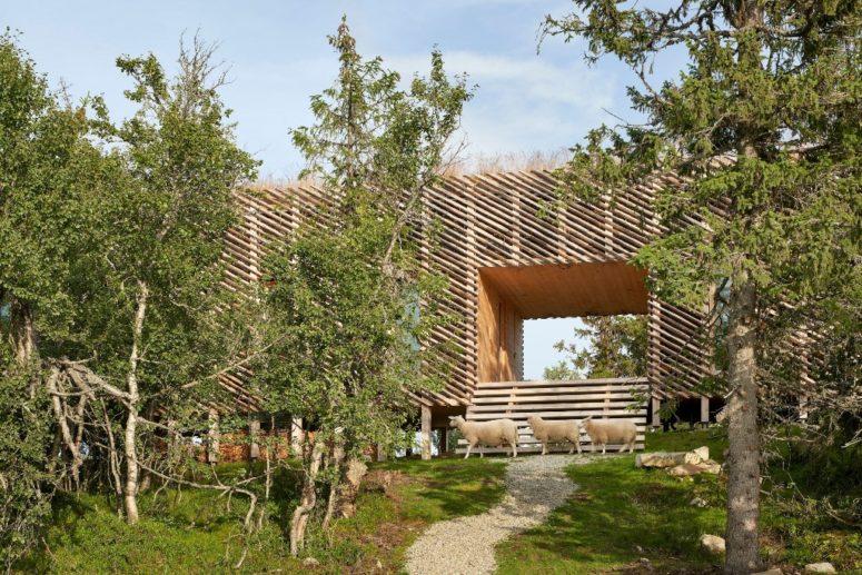 Il tetto è ricoperto di zolle e ci sono vaste aree vetrate per far entrare la luce naturale