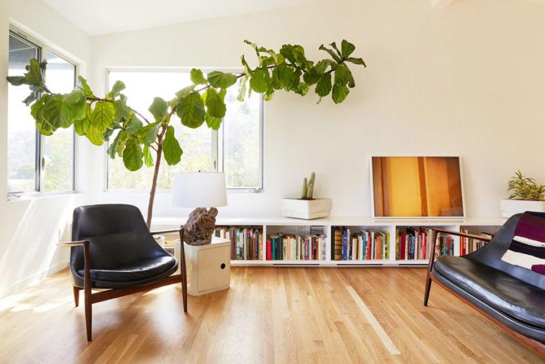 Il soggiorno è realizzato con una grande pianta in vaso, una lampada accattivante in legno galleggiante e alcune sedie in pelle e un divano